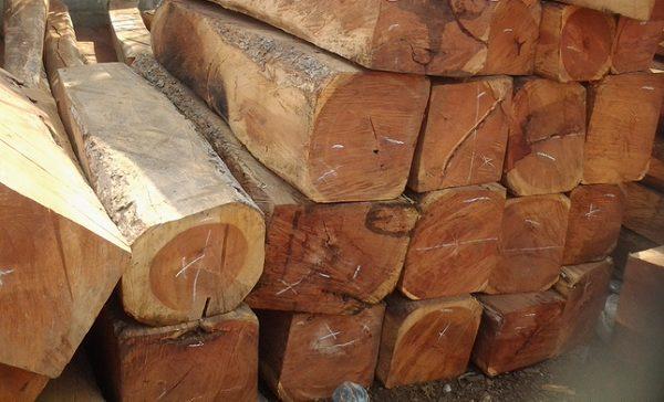 """Giá giường gỗ gụ bao nhiêu? Kinh nghiệm mua giường gỗ gụ """"để đời"""""""
