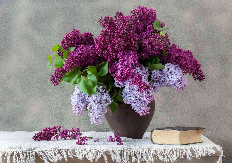 Hướng dẫn chọn bình cắm hoa phù hợp với từng loại hoa - Huong dan chon binh hoa phu hop voi tung loai hoa 5