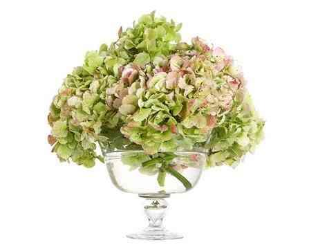 Hướng dẫn chọn bình cắm hoa phù hợp với từng loại hoa - Huong dan chon binh hoa phu hop voi tung loai hoa 6